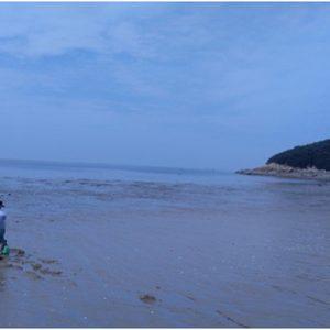 인천가볼만한곳 인천섬여행 대이작도