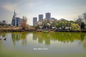인천논현동-늘솔길공원