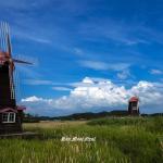 소래습지생태공원 풍차 풍경
