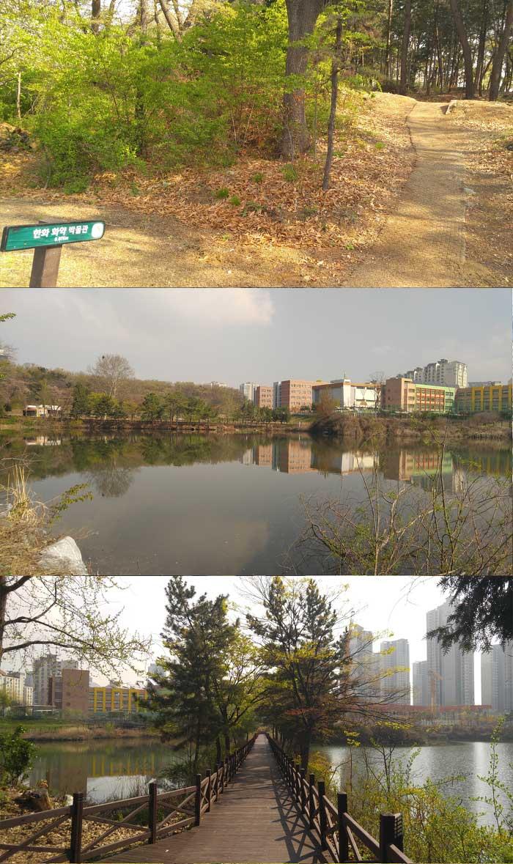 늘솔길공원-연못