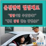 운전면허 벌점조회 및 정지, 취소 감경 받는 법