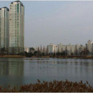 인천논현동 소래 호수공원 산책하기 좋은곳 아시나요?
