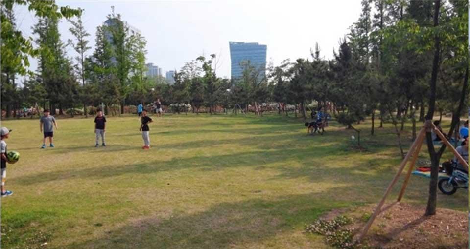 해돋이공원-잔디