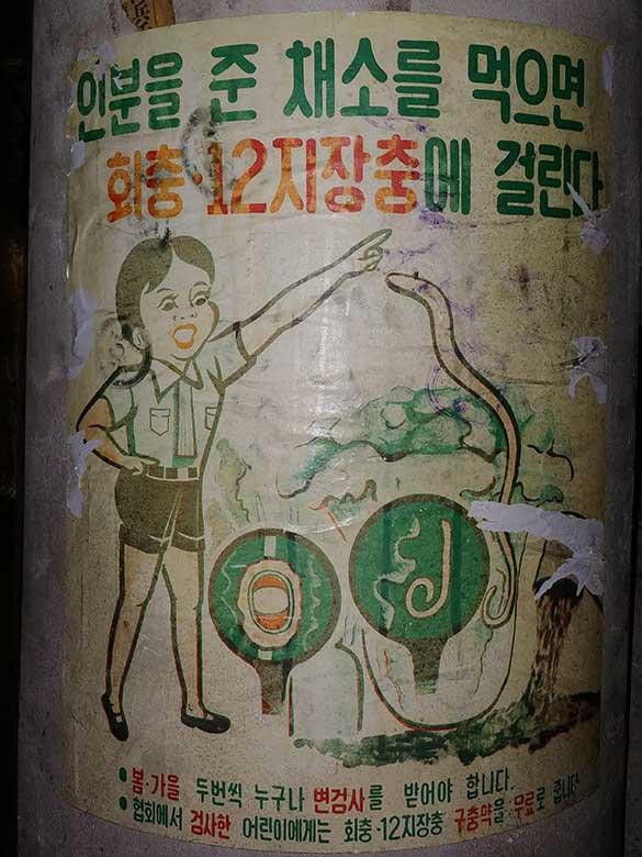 수도국산-박물관--공공포스터-회충