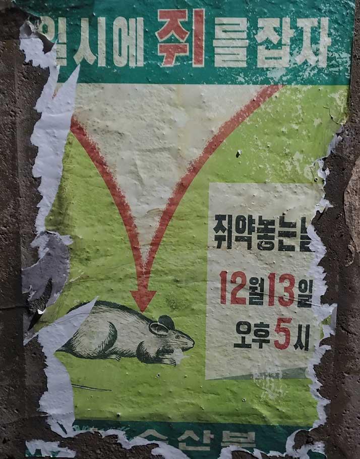 수도국산-박물관-취약놓는날-포스터