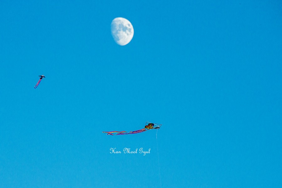 하늘 높이 날아라 (4)