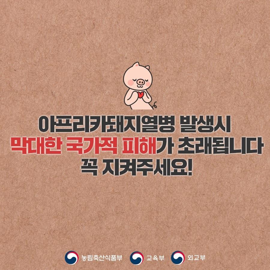 농식품부_카드뉴스_돼지열병_190523-5