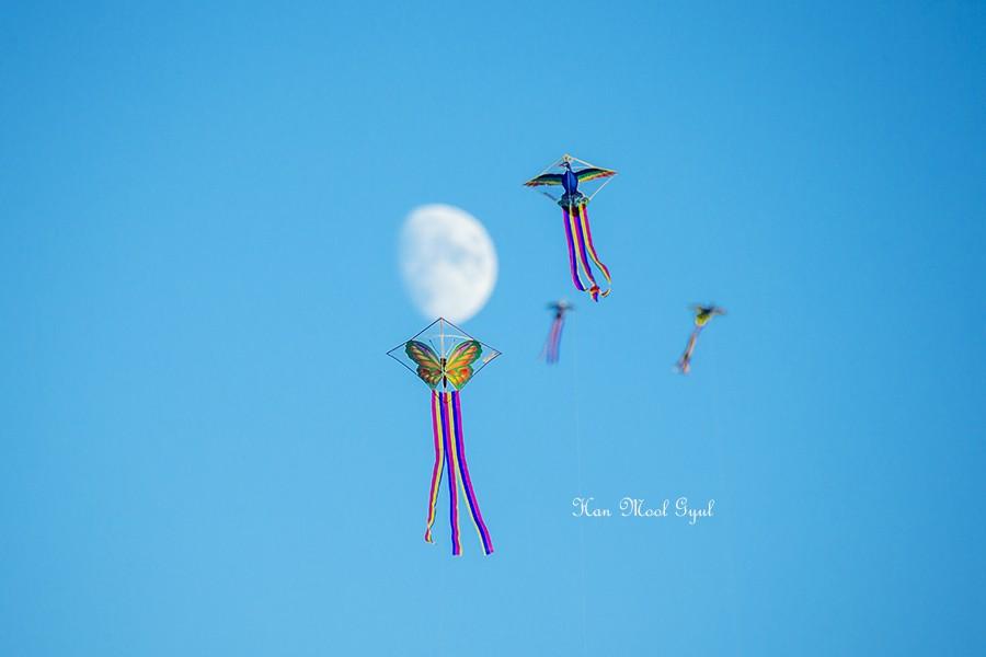 하늘 높이 날아라 (2)